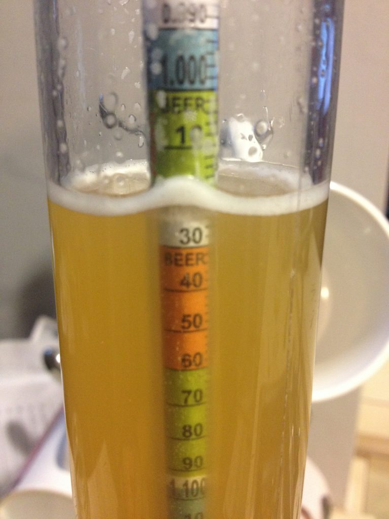 Clairty of Beer Prior to Dry Hop