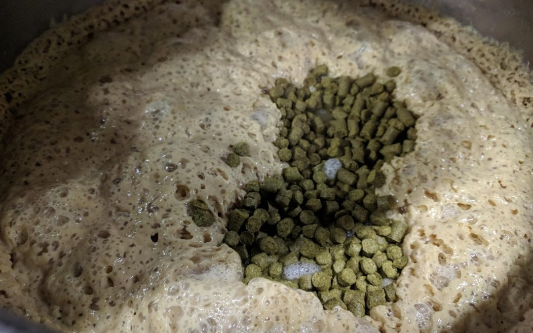 A Case for Short And Cool Dry Hopping